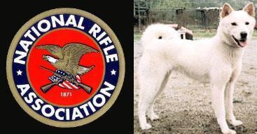 NRA DOg (1)