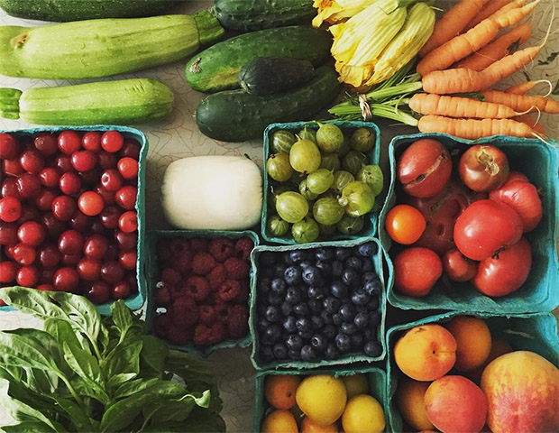 One week's haul from the Headhouse Farmer's Market