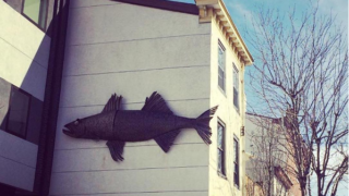 You can still see plenty of signs of fish in Fishtown.