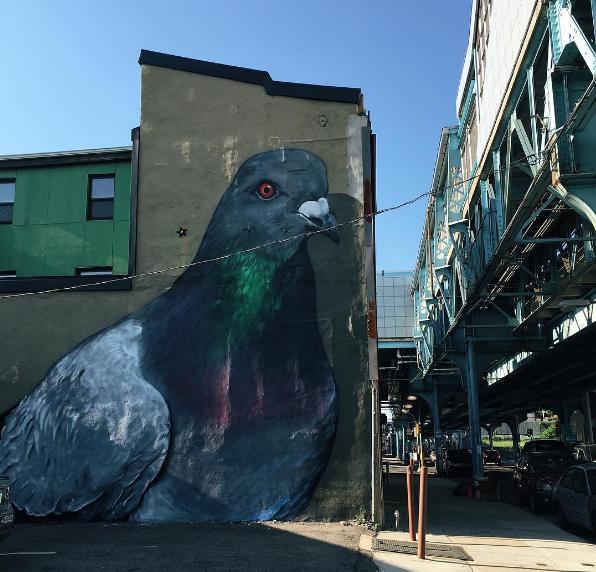 Pigeon mural Fishtown