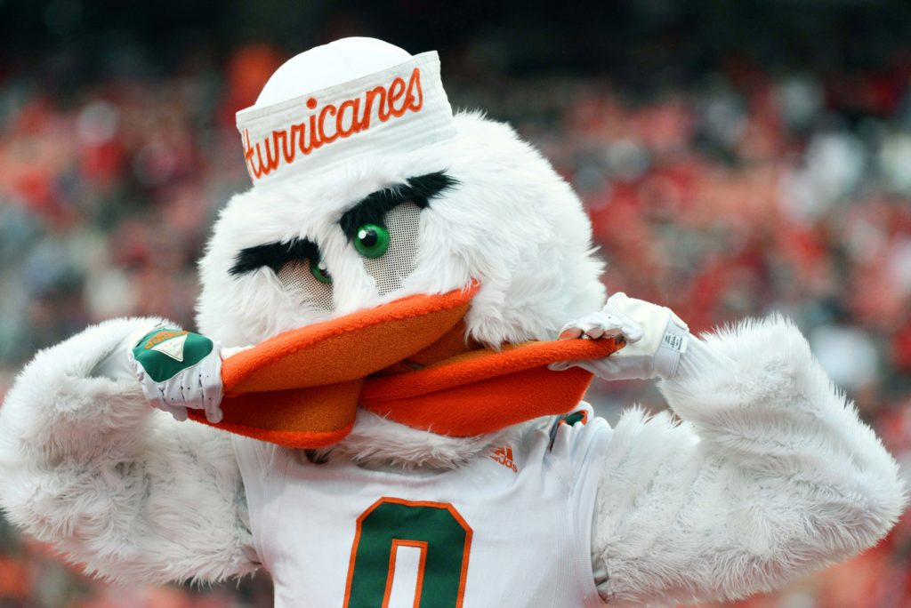 An ibis wouldn't get through the first round. But a hurricane is a title contender.