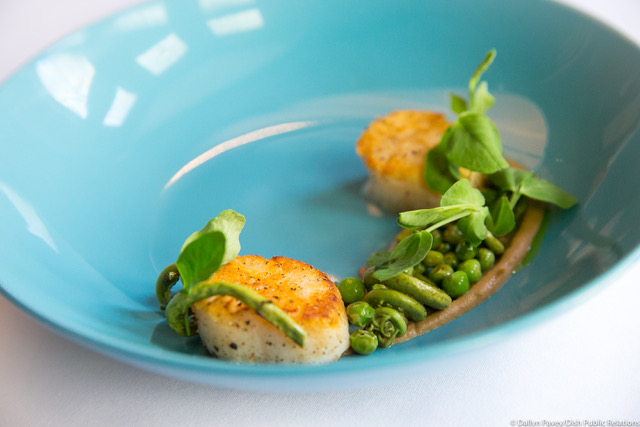 Scallop and Almonds 4