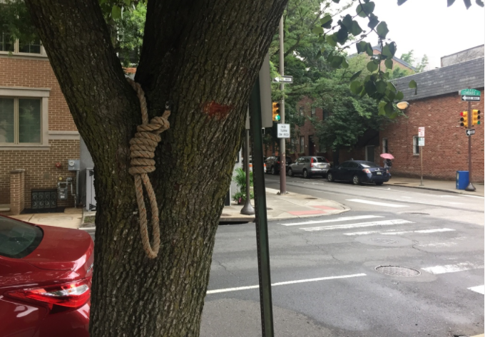 A noose hangs on a tree at 18th and Lombard