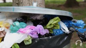 dog poop trash can