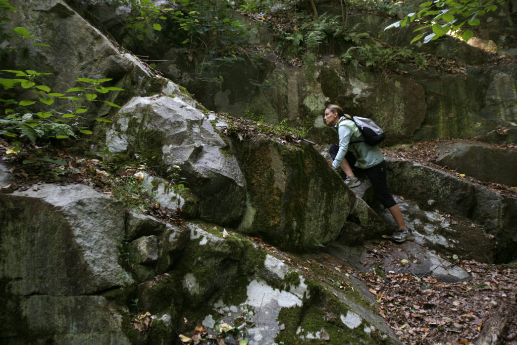 The varied terrains along Wissahickon Creek, located on the edge of Center City, challenges hikers of all levels.