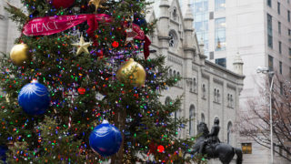 Last year's City Hall Christmas tree