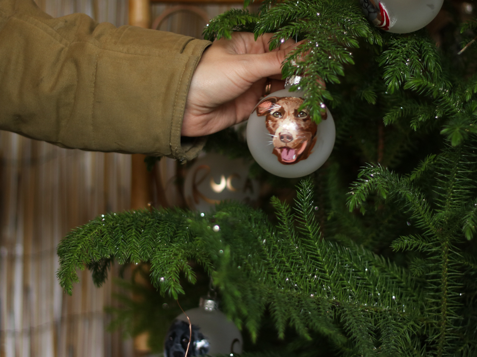 Pets painted onto ornaments.