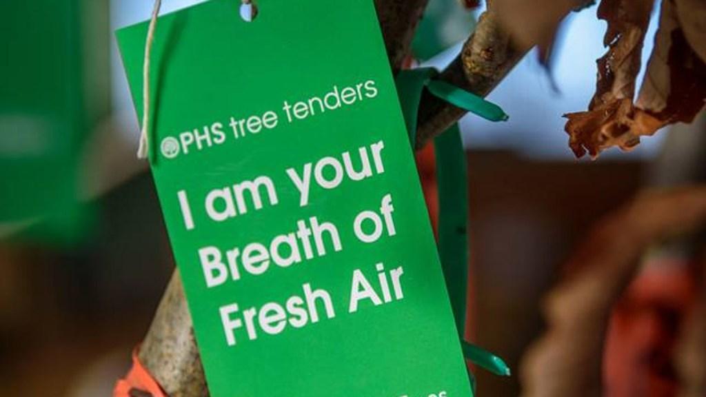 phstreetenders