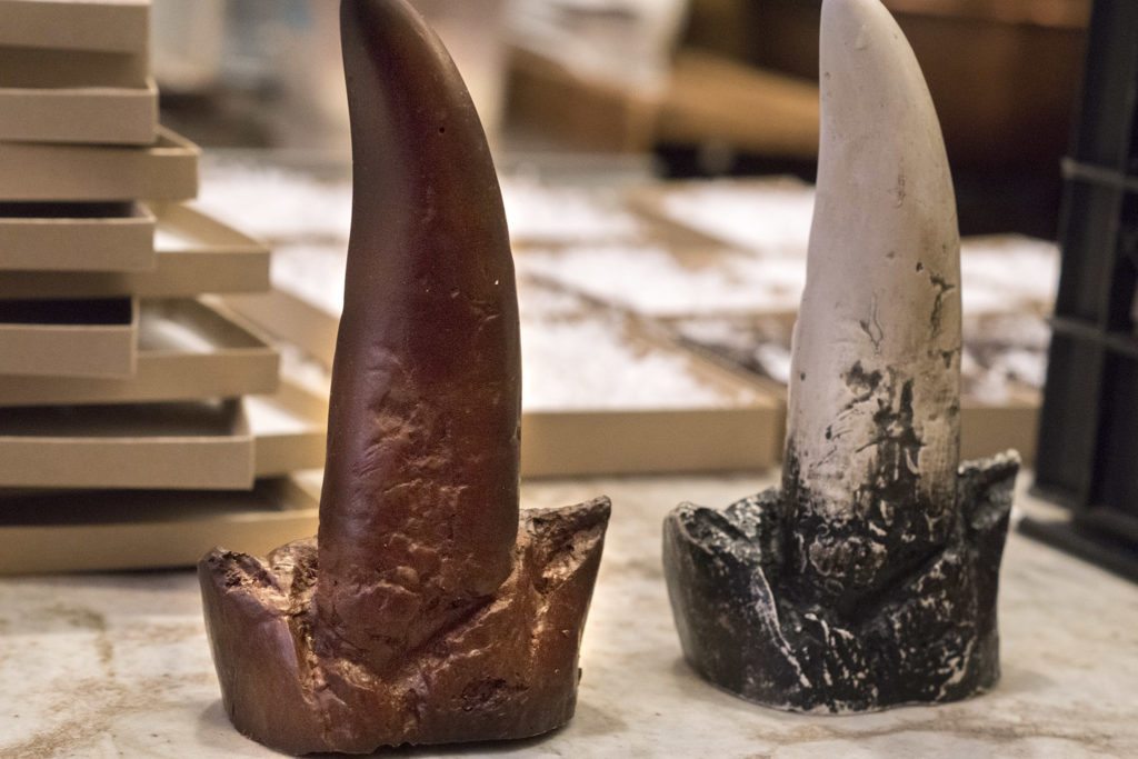 A giant chocolate tooth modeled after a real fossil