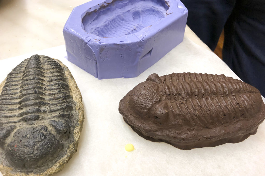 A chocolate trilobite, made from a model of a real fossil