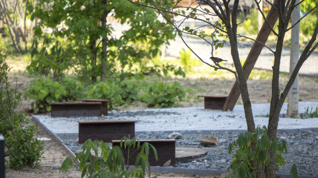 Naturally Philly: Why the plant life at the Rail Park looks ... on