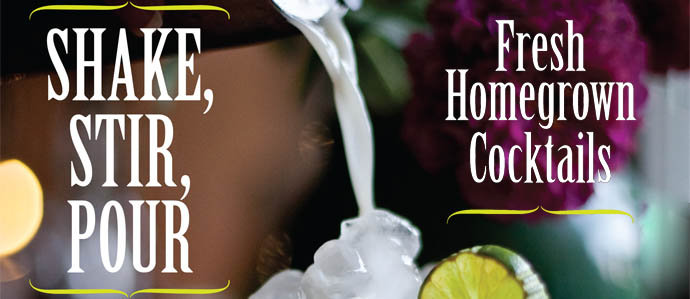 2012-04-16-shake-stir-pour