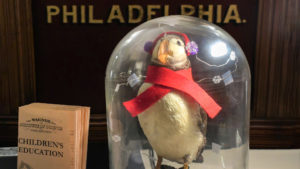 Pearl the Puffin got a new season-appropriate look