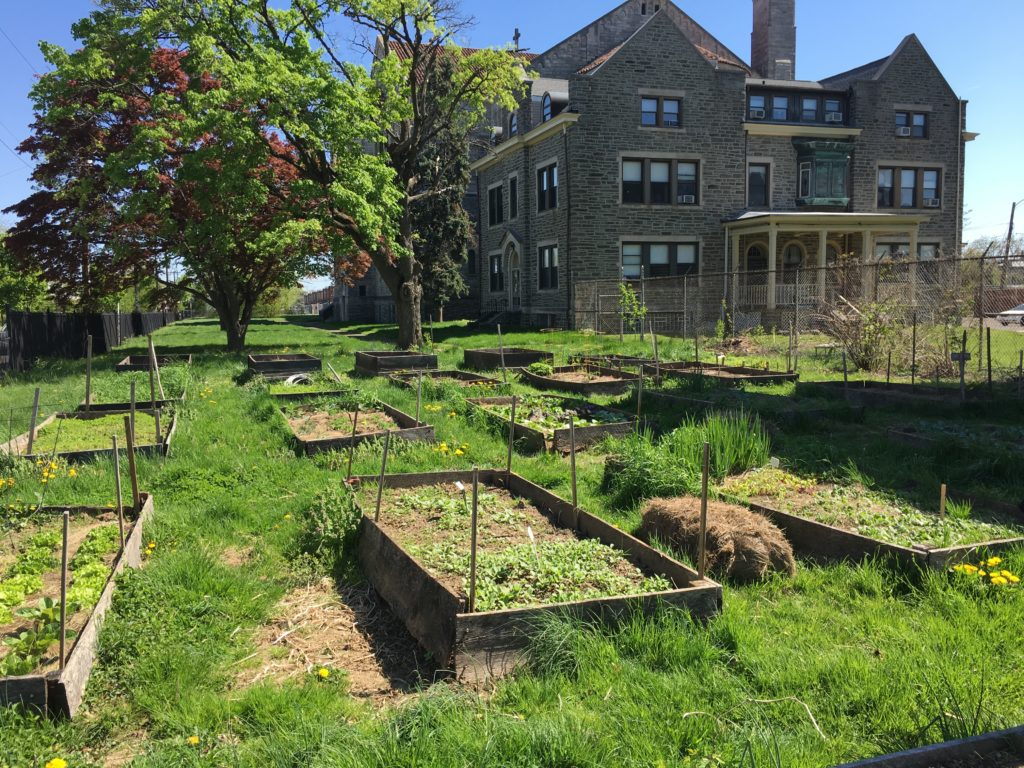 Depaul's farm in Germantown