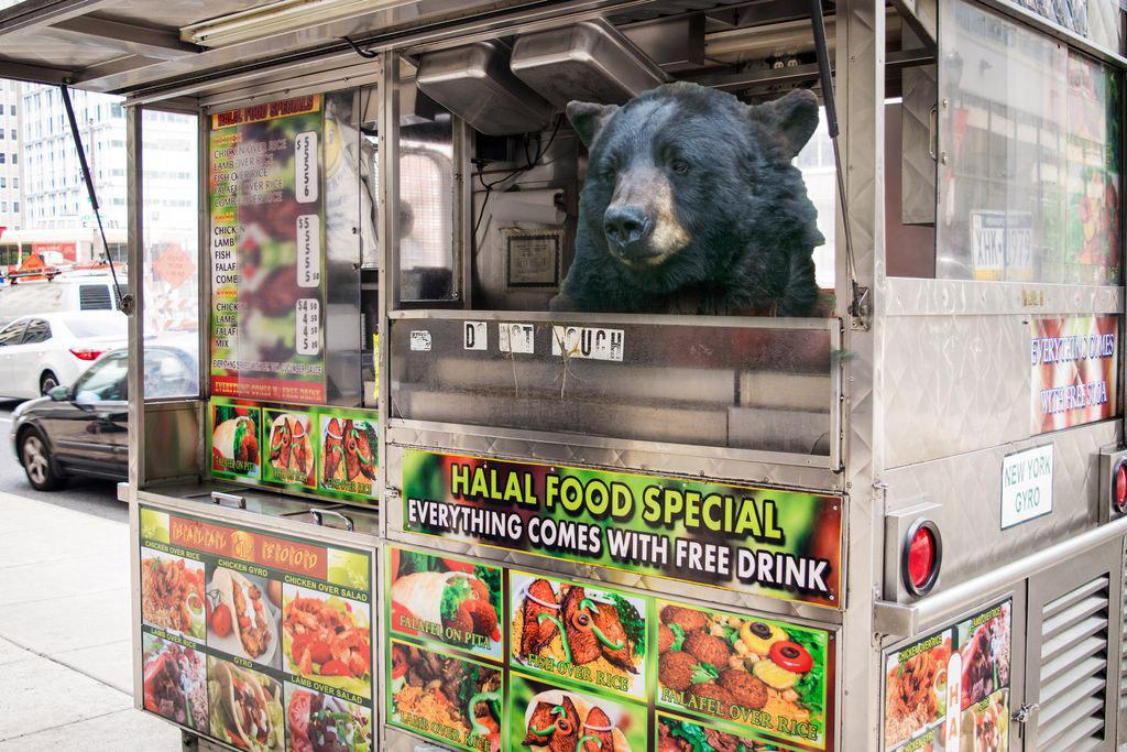 bear-foodtruck
