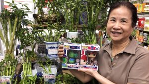 Chinese Culture & Arts in Philly's Chinatown placed Phillies bobbleheads among their stock of lucky bamboo