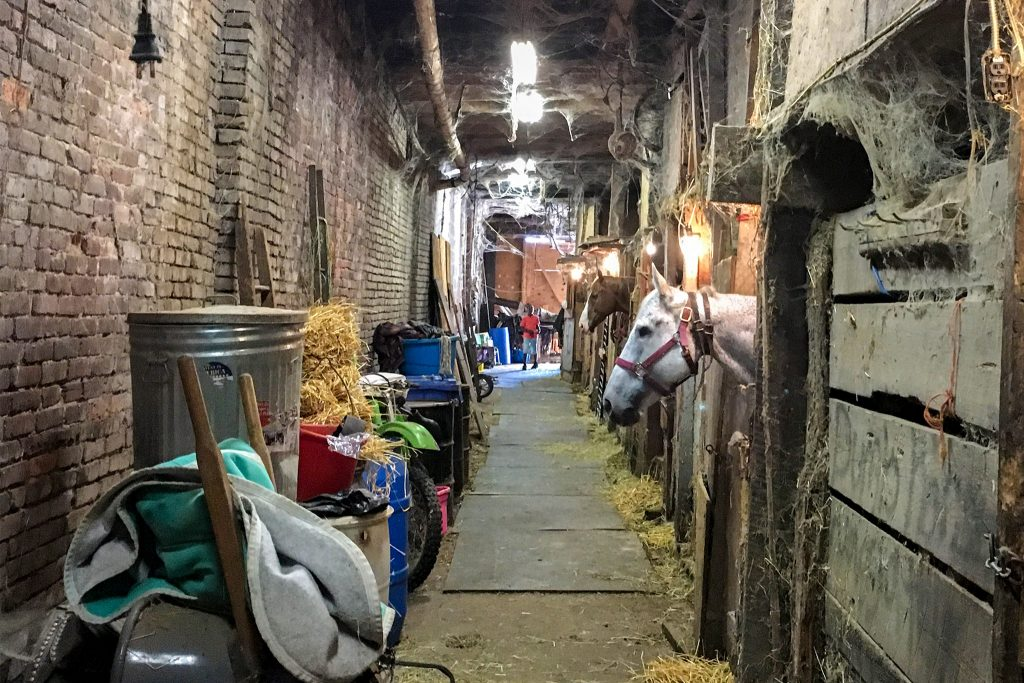 Inside the Fletcher Street Stables