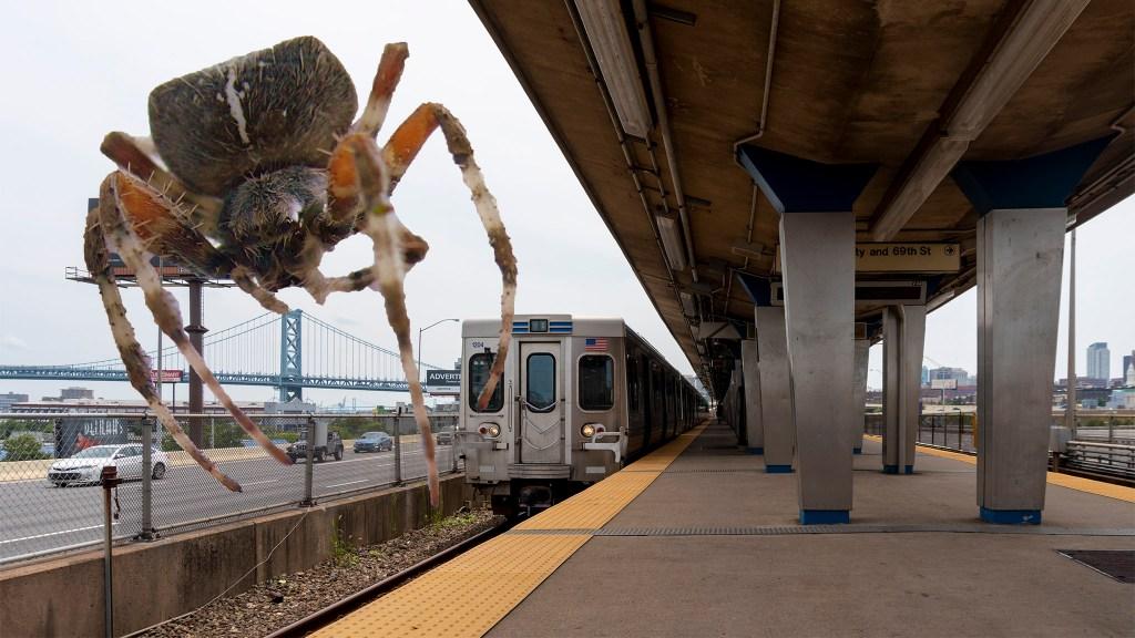 SEPTA fights spider invasion at Spring Garden subway stop - On top