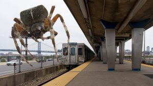 Orb weaver spider at Spring Garden Station. (Note: Dramatization. Not actual size.)