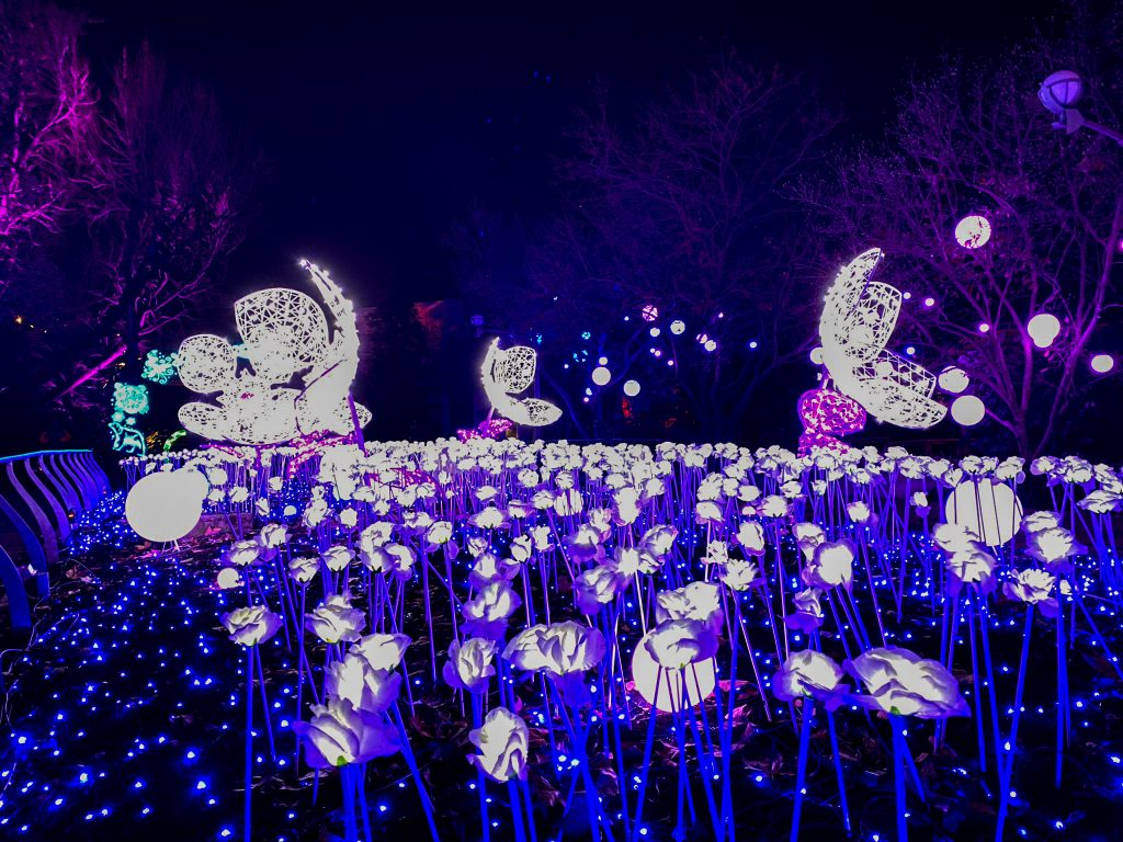 phillyzoo-luminatureholidaylights-02
