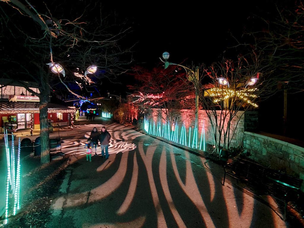 phillyzoo-luminatureholidaylights-09