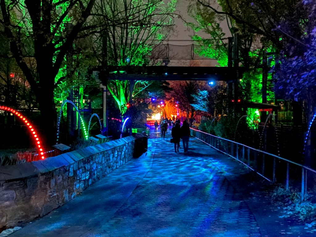 phillyzoo-luminatureholidaylights-11