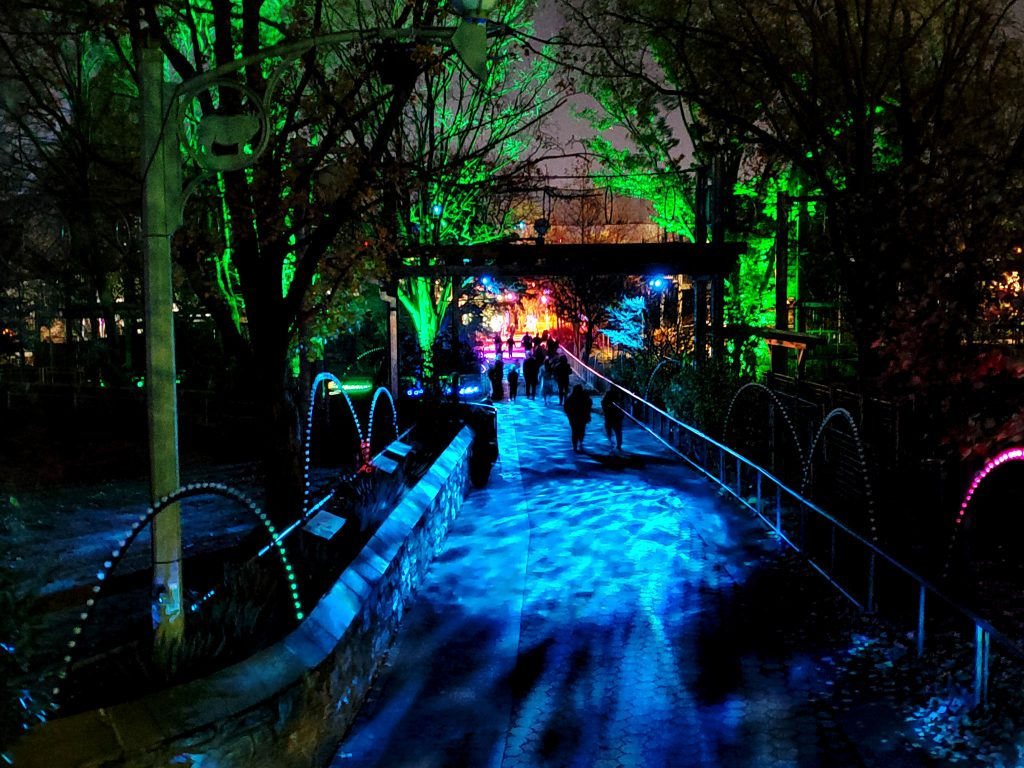 phillyzoo-luminatureholidaylights-12
