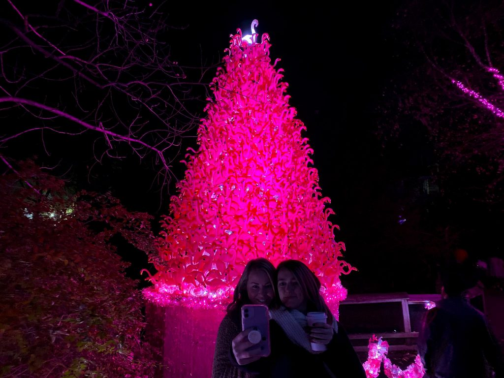 phillyzoo-luminatureholidaylights-15