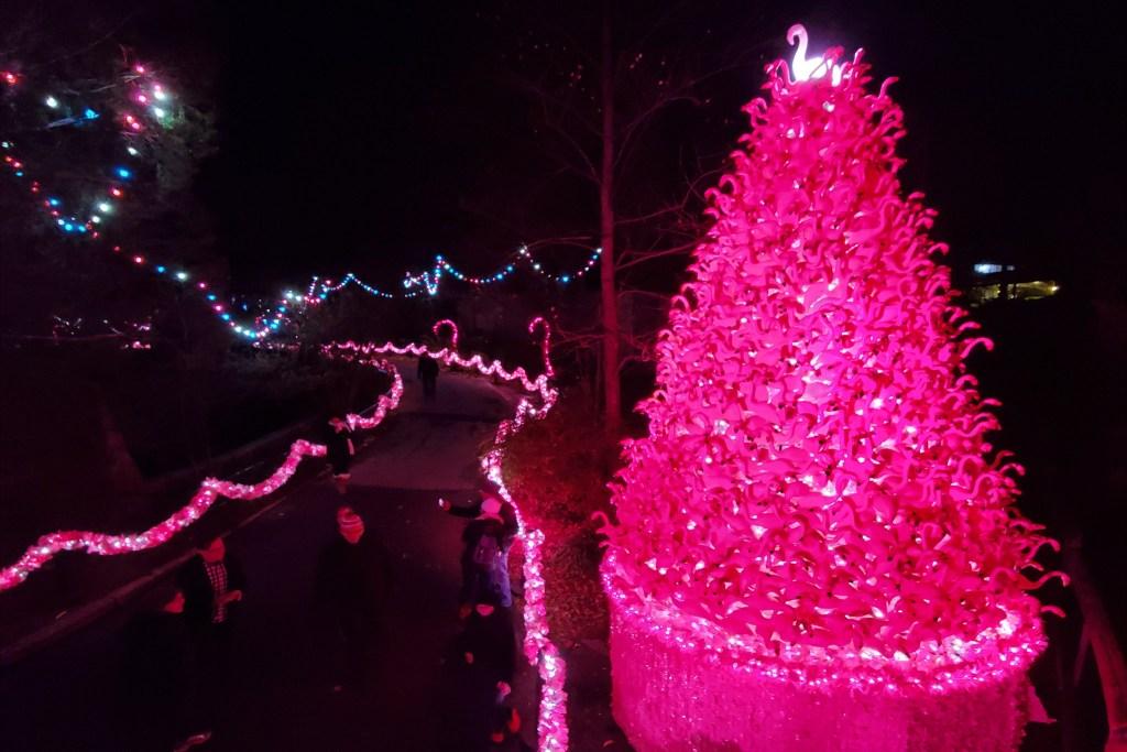 christmastree2019-phillyzoo