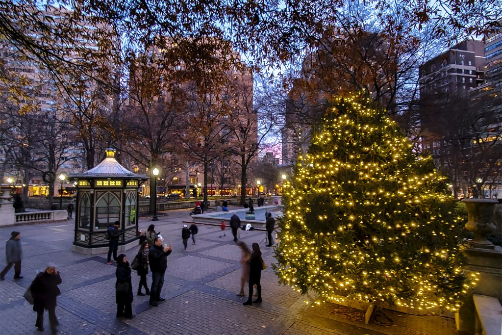 christmastree2019-rittenhouse