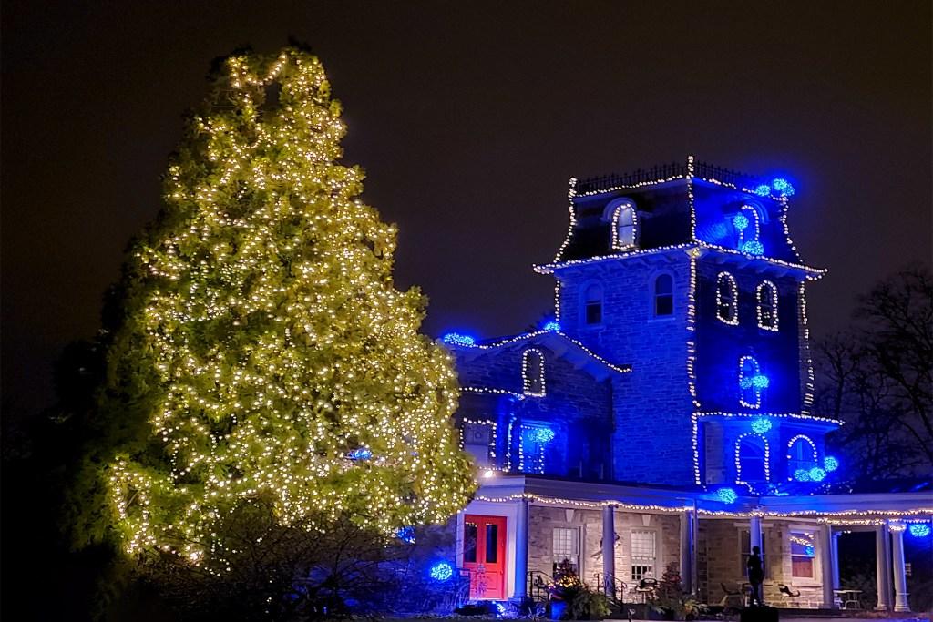 christmastree2019-woodmere