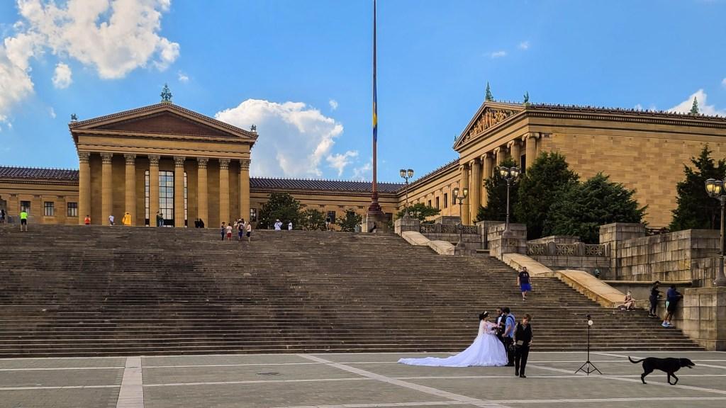 artmuseumsteps-wedding-dog-crop