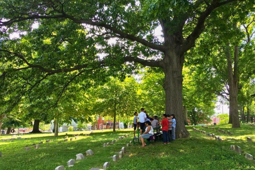 fairhill-burialground-01
