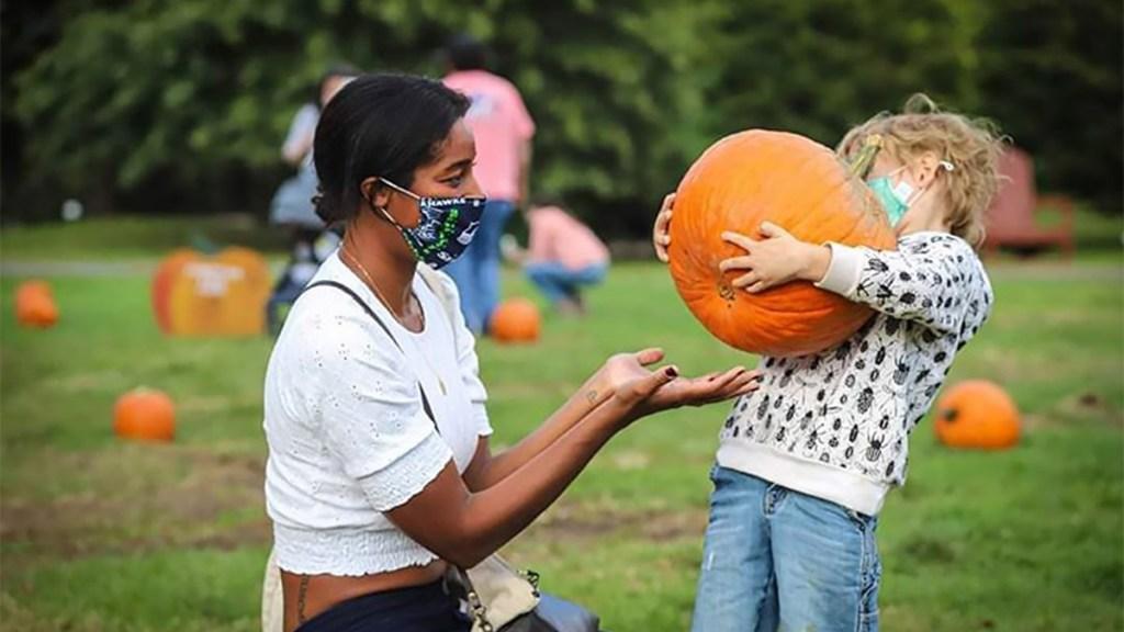 pumpkinpicking-snipesfarm