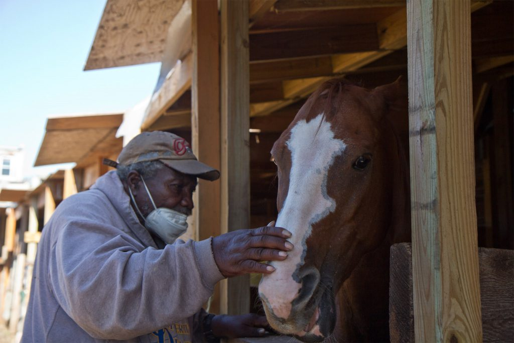 Fletcher Street Urban Riding Club founder Ellis Ferrell, 81, feeds a mint to a horse named 'El Dog'