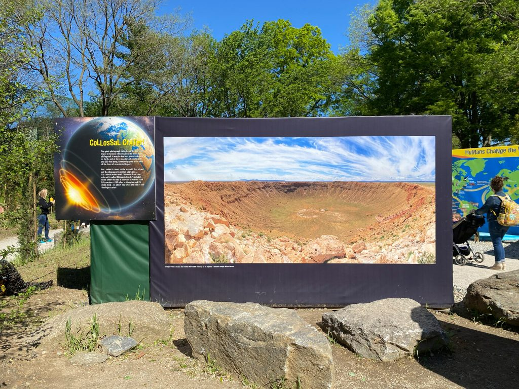 Asteroid crater believed to have caused dinosaurs' demise