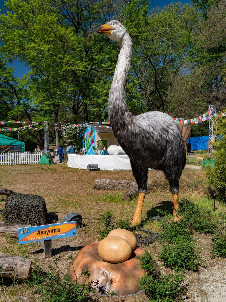 Apiornis is also known as the 'elephant bird' and weighs 1,200 pounds.