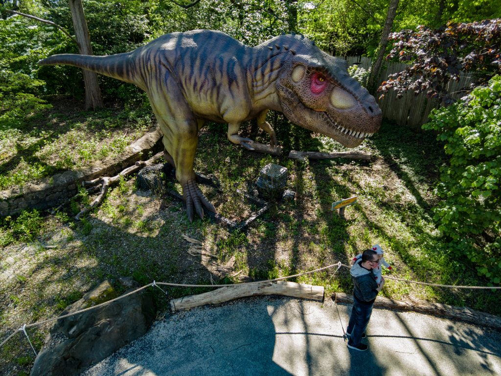 The T-Rex stands 40 feet and weighs 3,000 pounds.