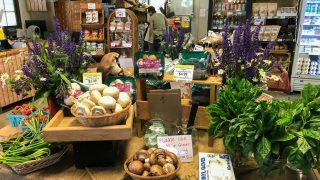 Produce on display at one of the Weavers Way grocery stores